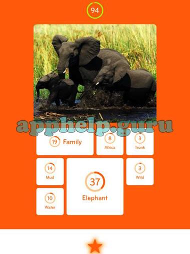 Bevorzugt 94%: Picture of elephants - Game Help Guru QZ48