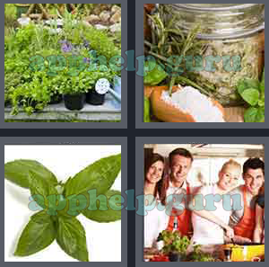 4 pics 1 word all level 1001 to 1100 4 letters answers game help 4 pics 1 word level 1001 to 1100 4 letters picture 1022 answer expocarfo