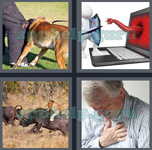 4 Pics 1 Word All Level 1101 To 1200 6 Letters Answers Game Help