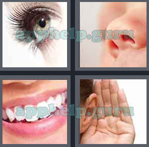 4 pic 1 word 130 answer
