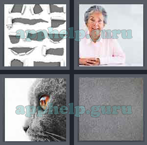 4 Pics 1 Word: Level 1701 to 1800: 4 Letters Picture 1715 Answer