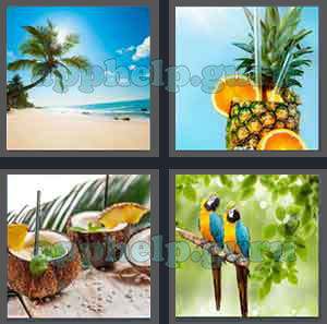 4 pics 1 word level 2001 to 2100 8 letters picture 2088 answer level 2001 to 2100 8 letters picture 2088 answer expocarfo Choice Image
