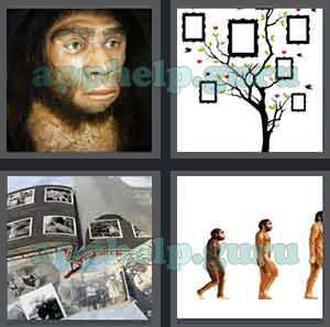 4 Pics 1 Word All Level 2301 To 2400 8 Letters Answers Game Help