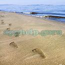 100 Pics Quiz: Desert Island Level 35 Answer