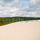 100 Pics Quiz: Desert Island Level 40 Answer