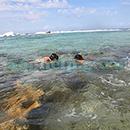 100 Pics Quiz: Desert Island Level 46 Answer
