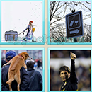 Guess Word - 4 Pics 1 Word (WedSoft and Weizoo): Level 10 Answer