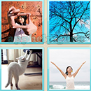 Guess Word - 4 Pics 1 Word (WedSoft and Weizoo): Level 130 Answer