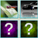 Guess Word - 4 Pics 1 Word (WedSoft and Weizoo): Level 27 Answer