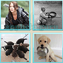 Guess Word - 4 Pics 1 Word (WedSoft and Weizoo): Level 31 Answer