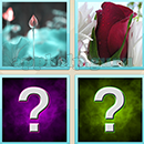 Guess Word - 4 Pics 1 Word (WedSoft and Weizoo): Level 61 Answer