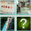Guess Word - 4 Pics 1 Word (WedSoft and Weizoo): Level 68 Answer