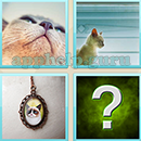 Guess Word - 4 Pics 1 Word (WedSoft and Weizoo): Level 78 Answer