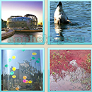 Guess Word - 4 Pics 1 Word (WedSoft and Weizoo): Level 87 Answer