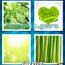 4 Pics 1 Word (Words Mobile): Level 52 Answer