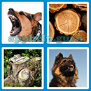 Guess The Word - 4 Pics 1 Word (Loga Games): Level 70 Answer