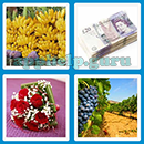 Guess The Word - 4 Pics 1 Word (Loga Games): Level 80 Answer