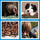 Guess The Word - 4 Pics 1 Word (Loga Games): Level 87 Answer