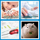 Guess The Word - 4 Pics 1 Word (Loga Games): Level 98 Answer
