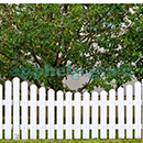 Guess The Picture (Words Mobile): Album 2 Answer 6 Answer
