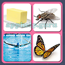 4 Pics 1 Song (Game Circus): Group 26 Level 16 Answer
