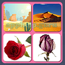 4 Pics 1 Song (Game Circus): Group 50 Level 14 Answer