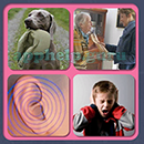 4 Pics 1 Song (Game Circus): Group 63 Level 1 Answer