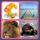 4 Pics 1 Song (Game Circus): Group 72 Level 4 Answer