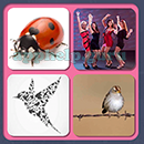 4 Pics 1 Song (Game Circus): Group 95 Level 1 Answer