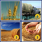 4 Pics 1 Word: More Words: Level 4 Word 11 Answer