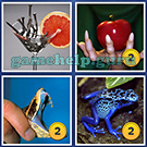 4 Pics 1 Word: More Words: Level 4 Word 12 Answer