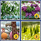 4 Pics 1 Word: More Words: Level 4 Word 6 Answer