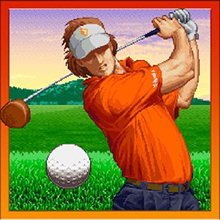 Neo Turf Masters Review