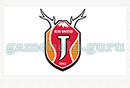 Logo Quiz (Guess It Apps): South korea 2 Logo 16 Answer