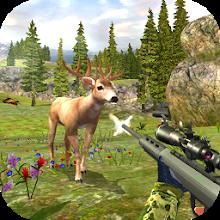 Deer Hunting Kill Shot